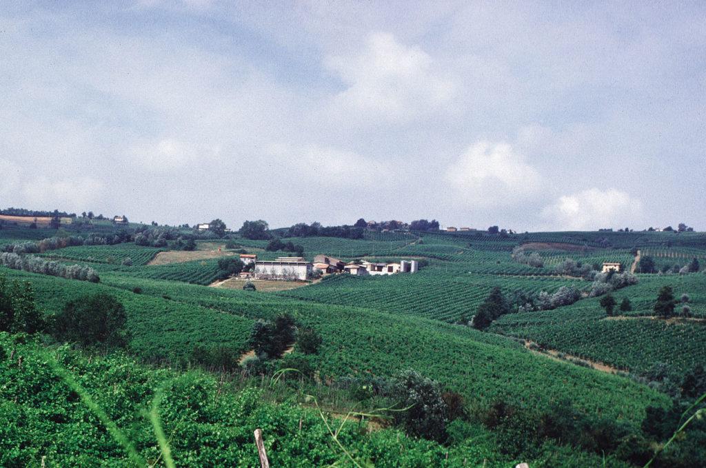 Azienda Agricola Prago Vini e Spumanti Oltrepò Pavese - Azienda