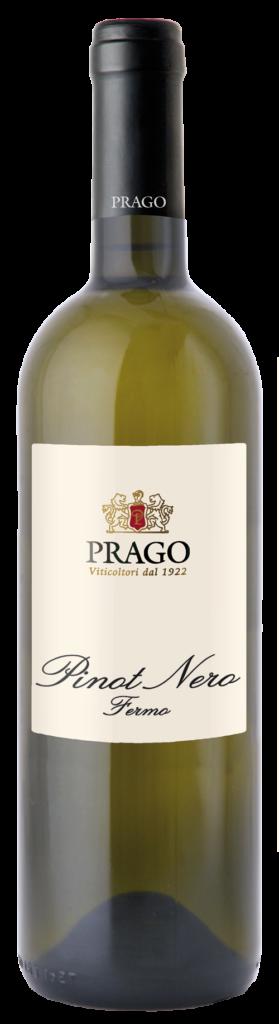 PRAGO Vini e Spumanti Oltrepò Pavese - Vini Fermi - Pinot Nero Vinificato Bianco